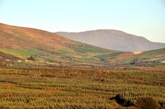 Autumn/Fall in the Valley, Kerry, Ireland Royalty Free Stock Image