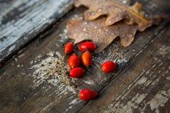 Autumn Fall Wood Background Stock Image