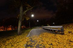 Autumn fallen leaves lie on the path in a city park. stock image