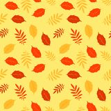Autumn fallen leaves vector seamless pattern Royalty Free Stock Photos