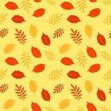 Autumn fallen leaves vector seamless pattern Royalty Free Stock Photos