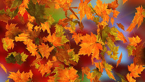 Autumn falling leaves Stock Photo