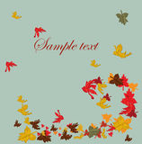 Autumn falling leaves background Royalty Free Stock Images