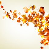 Autumn falling leaves background. EPS 10 royalty free illustration