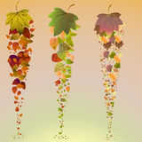 Autumn falling leaves background. Includes EPS 10 vector Stock Images