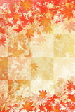 Autumn falling leaves. Background of autumn leaf color Stock Images