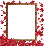 Autumn falling leaves on empty wooden frame  on white ba Royalty Free Stock Photos