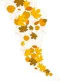 Autumn falling leaves isolated. plus EPS10 Stock Images