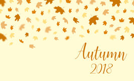 Autumn falling leaves pattern with text Autumn 2018 background. Royalty Free Stock Images