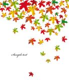 Autumn falling leaves. Vector Royalty Free Stock Photo