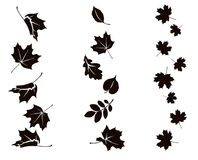 Autumn falling leaves. Vertical ornament with leaf silhouette vector illustration