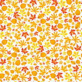 Autumn falling maple and oak leaves, seamless pattern. Autumn falling maple and oak leaves, pattern,  on white background Royalty Free Stock Photography