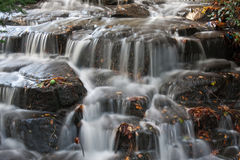 Autumn Falls. A small waterfall carrying autumn leaves on its journey Stock Photography
