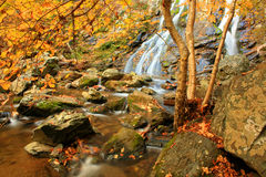 Autumn Falls. Waterfall in the Appalachian Mountains in the Autumn stock photography