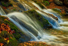 Autumn falls. A small waterfall is surrounded by moss and fallen autumn maple leaves Royalty Free Stock Photo