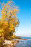 Autumn on the Dnieper River Stock Image