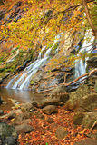 Autumn Falls II. Waterfall in Shenandoah National Park royalty free stock photo