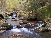Autumn falls. Stream within Great Smoky Mountains National Park, Tennessee USA Stock Images