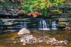 Autumn Falls in Stream Stock Photos