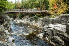 Autumn Falls Vista Arkivfoto