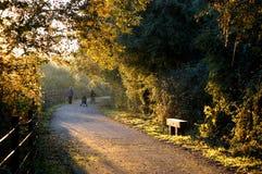 Autumn_family_walk Royalty Free Stock Image