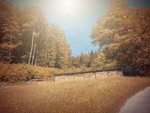 In Autumn.Fantasy fable in Park with Sunrise scene. Fantasy fable scene effects applied.View in the Europe and in the mountain stock photo