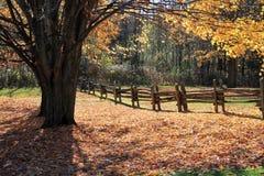 Autumn Farm Fotos de archivo