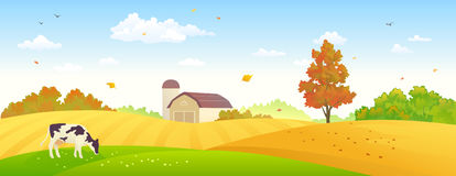 Autumn farm banner. Illustration of an autumn farm banner with wheat fields and a grazing cow Stock Photos