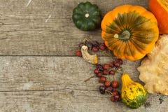 Autumn farm decoration. Harvest pumpkins. Autumn background corner frame with pumpkins and leaves. Royalty Free Stock Photos