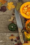 Autumn farm decoration. Harvest pumpkins. Autumn background corner frame with pumpkins and leaves. Royalty Free Stock Photo