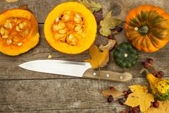 Autumn farm decoration. Harvest pumpkins. Autumn background corner frame with pumpkins and leaves. Royalty Free Stock Image