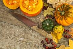 Autumn farm decoration. Harvest pumpkins. Autumn background corner frame with pumpkins and leaves. Stock Photos