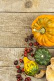 Autumn farm decoration. Harvest pumpkins. Autumn background corner frame with pumpkins and leaves. Royalty Free Stock Images
