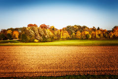 Autumn farm field Stock Image