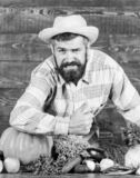 Autumn on the farm. man chef with rich autumn crop. organic and natural food. happy halloween. bearded mature farmer