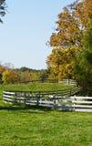 Autumn Farm Pasture Stock Photos