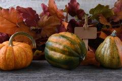 Autumn Farm Stand con las calabazas Imagen de archivo