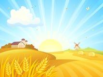 Autumn farm sunrise. Vector illustration of an autumn sunrise landscape with wheat fields, barns and a windmill vector illustration
