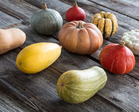 Autumn farming with organic pumpkins over old wood background Stock Images