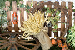 Autumn farming products Stock Image