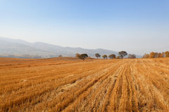 Autumn farmland Stock Photography