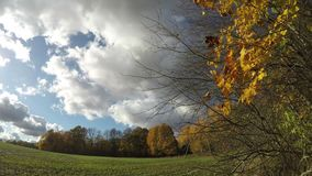 Autumn farmland with field and trees and clouds motion, time lapse. Autumn farmland landscape with field and trees and clouds motion, time lapse stock video
