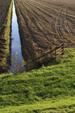 Autumn farmland in the Netherlands Royalty Free Stock Image