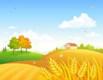 Autumn farmland. Vector illustration of a colorful autumn farmland Stock Image