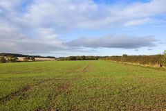 Autumn farmland Stock Photos