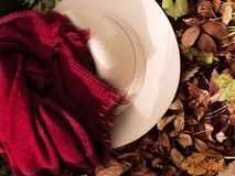 Autumn fashion accesories Royalty Free Stock Photo