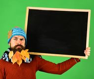 Autumn fashion ad and presentation concept. Hipster with confused face. And beard full of autumn leaves. Man in hat holds blackboard on green background. Guy stock photo
