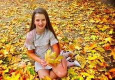 Autumn fashion dress child girl sitting fall leaves park outdoor. stock images