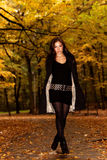 Autumn fashion portrait Stock Images