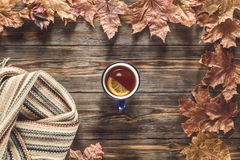 Autumn fashion seasonal concept Scandinavian knitted scarf cup hot black tea. Coffee Fall fallen maple leaves on wooden table with notebook pen Flat lay Top stock photo